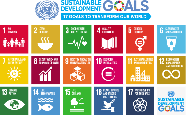 Create your own goals for volunteering abroad using Sustainable Development Goals UN
